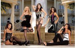 美国进口 Dreamgirl隽阁 高端 情趣内衣 诚招批发商-情趣内衣