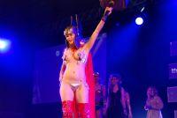 2016澳大利亚墨尔本成人展sexpoCosplay图片11