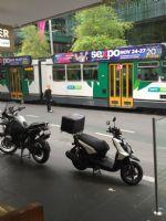 2016澳大利亚墨尔本成人展sexpo宣传推广图片11