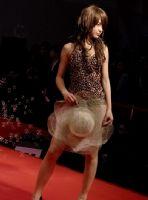 2009上海成人展情趣内衣秀图片7