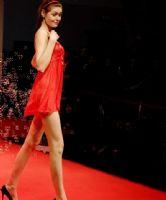 2009上海成人展情趣内衣秀图片16