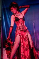 2013美国劳德代尔成人展表演性感而精彩图片10