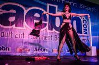 2013美国劳德代尔成人展表演性感而精彩图片14