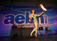 2011美国迈阿密成人展eXXXotica美女如云图片13