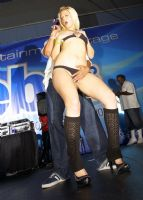 2011美国迈阿密成人展eXXXotica美女如云图片15
