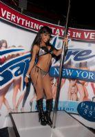 2011美国新泽西成人展eXXXotica舞台表演图片13