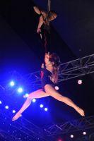 2009澳大利亚墨尔本成人展sexpo展会现场图片4