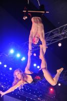 2009澳大利亚墨尔本成人展SuzieQ高空特技表演图片15