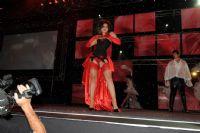 2009澳大利亚墨尔本成人展精彩舞台表演图片3