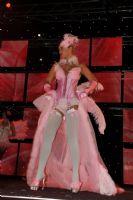 2009澳大利亚墨尔本成人展精彩舞台表演图片5