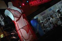 Lelo等名企参展2009澳大利亚帕斯成人展图片15