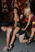 2011澳大利亚墨尔本成人展Sexpo星光灿烂图片3