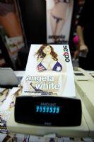 2012澳大利亚敦斯维尔成人展Sexpo现场报道图片4