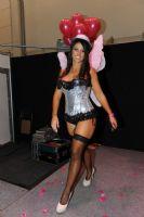 2012澳大利亚墨尔本成人展性感模特风情万种图片17