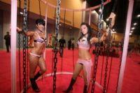 2009美国迈阿密成人展eXXXotica现场报道图片3