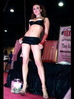 2008美国迈阿密成人展eXXXotica现场报道图片16