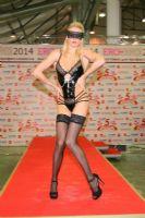 2014俄罗斯成人展高挑内衣模特诠释性感图片2