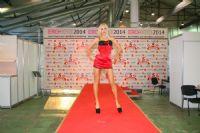 2014俄罗斯成人展高挑内衣模特诠释性感图片9
