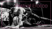 2016阿根廷成人展上演性感热舞引爆现场图片9