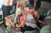 2013拉脱维亚成人展举办派对(1)图片15