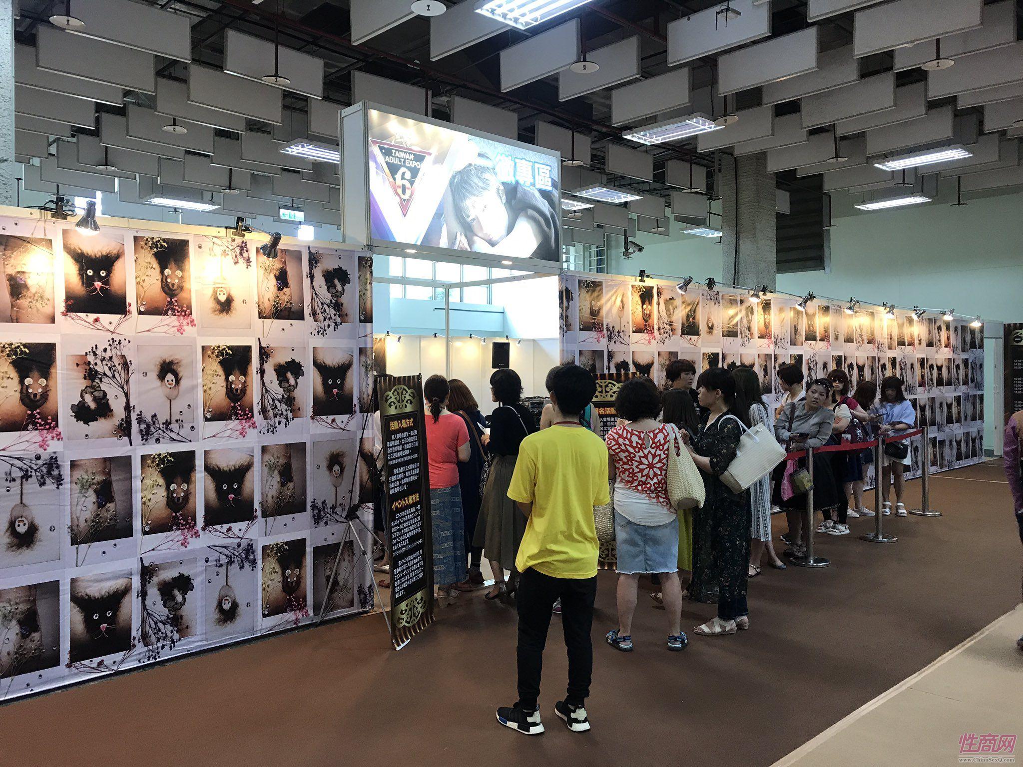 2017第六届台湾成人博览会女优嫩模云集图片28