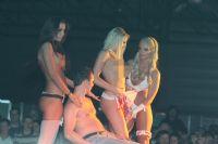 2013拉脱维亚成人展举办多场性感热舞表演图片3