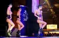2014拉脱维亚成人展半裸热舞引爆现场气氛图片9