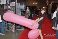 2008加拿大多伦多成人展ETWS现场集锦图片1