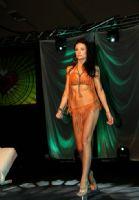 2011加拿大尼亚加拉瀑布城成人展ETWS现场集锦图片15