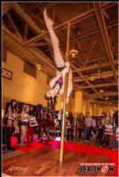 2013加拿大多伦多成人展ETWS精彩表演图片17