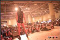 2013加拿大多伦多成人展ETWS情趣内衣秀图片6