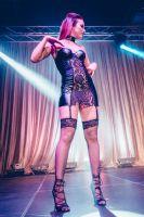 2017加拿大哈利法克斯成人展让性更和谐图片11