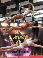 2017第六届台湾成人博览会报道―第二天图片5