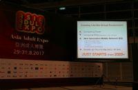 亚洲成人博览论坛:VR成就未来终极快乐图片12