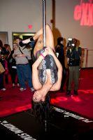 2011美国eXXXotica新泽西成人展展会报道图片1