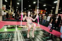 2009美国eXXXotica新泽西成人展参展影星图片14