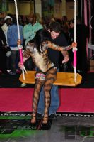 2009美国eXXXotica新泽西成人展现场集锦图片10