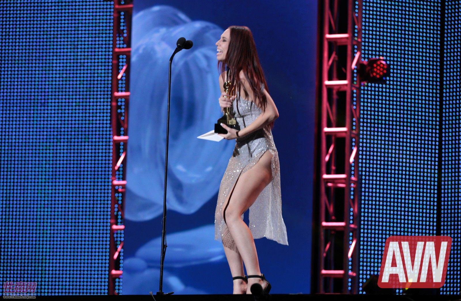 18拉斯维加斯成人展AVN:颁奖典礼 (40)