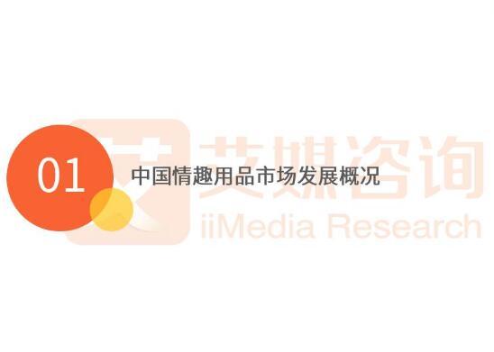 艾媒报告:2018第一季度中国情趣行业专题研究