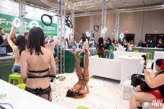 拉斯维加斯成人展AVN-展会第一天 (11)