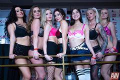 拉斯维加斯成人展AVN-成人影星 (3)
