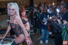 拉斯维加斯成人展AVN-成人影星