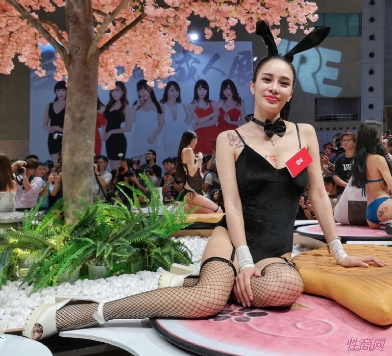 视觉盛宴感觉美女都来参加台北成人博览了图片38