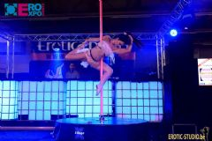 比利时根特成人展-钢管舞表演 (10)