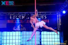 比利时根特成人展-钢管舞表演 (12)