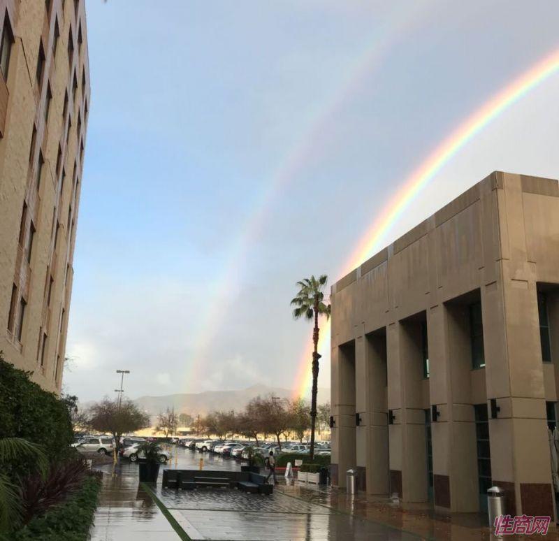 雨后绚丽的彩虹