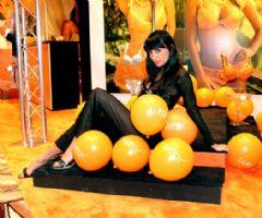 2008美国秋季ILS情趣内衣展性感模特图片2