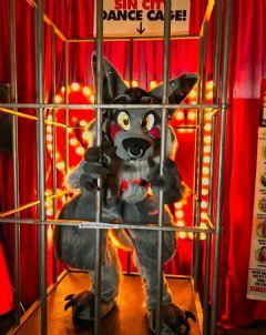 大灰狼人偶玩囚笼游戏